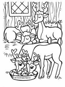 Christmas Reindeer Coloring Worksheets or Xmas Coloring Pages