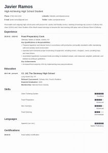 Template Resume Student Of High School Student Resume Template & 20 Examples