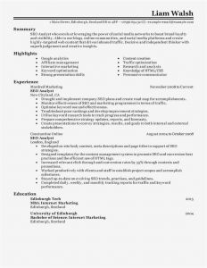 Resume Template to Copy and Paste or Copy and Paste Resume Free Collection 60 Pics