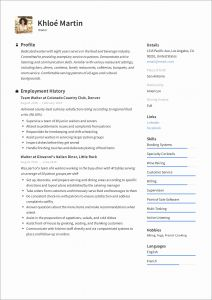 Resume Template to Copy and Paste or Resume format for Job Copy and Paste Templates Template Sample V9qak1lrwj